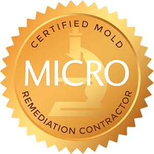 certified-mold-remedation-contractor-bio-one-idaho-falls
