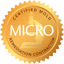 certified mold remedation contractor bio one idaho falls
